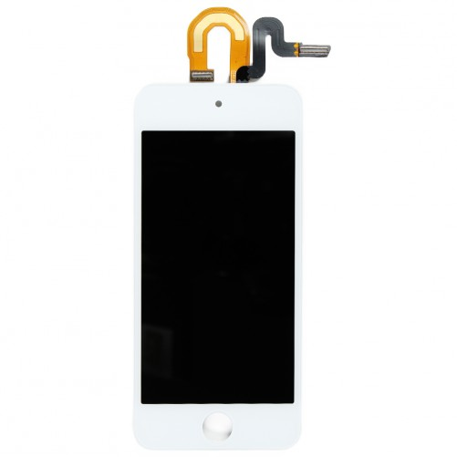 Complete WHITE screen - iPod Touch 6G
